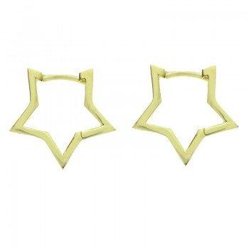 Aros dorados estrella Plata...